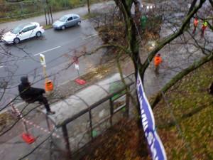 Baumfällungen unter Polizeischutz für A100 in Berlin-Neukölln, Kletterer retten Bäume