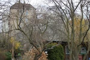 beermannstraße1