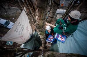 Protest im Baumwipfel gegen die A100 (Foto: Ruben Neugebauer)