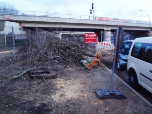 Baumfällungen am Trepower Park wegen Stadtautobahn A100?